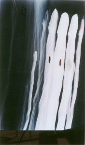 Chartres 3 (1998, Photograph, wood, pigments, 71 x 120 cm.)